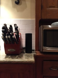 Alexa hanging out in our kitchen