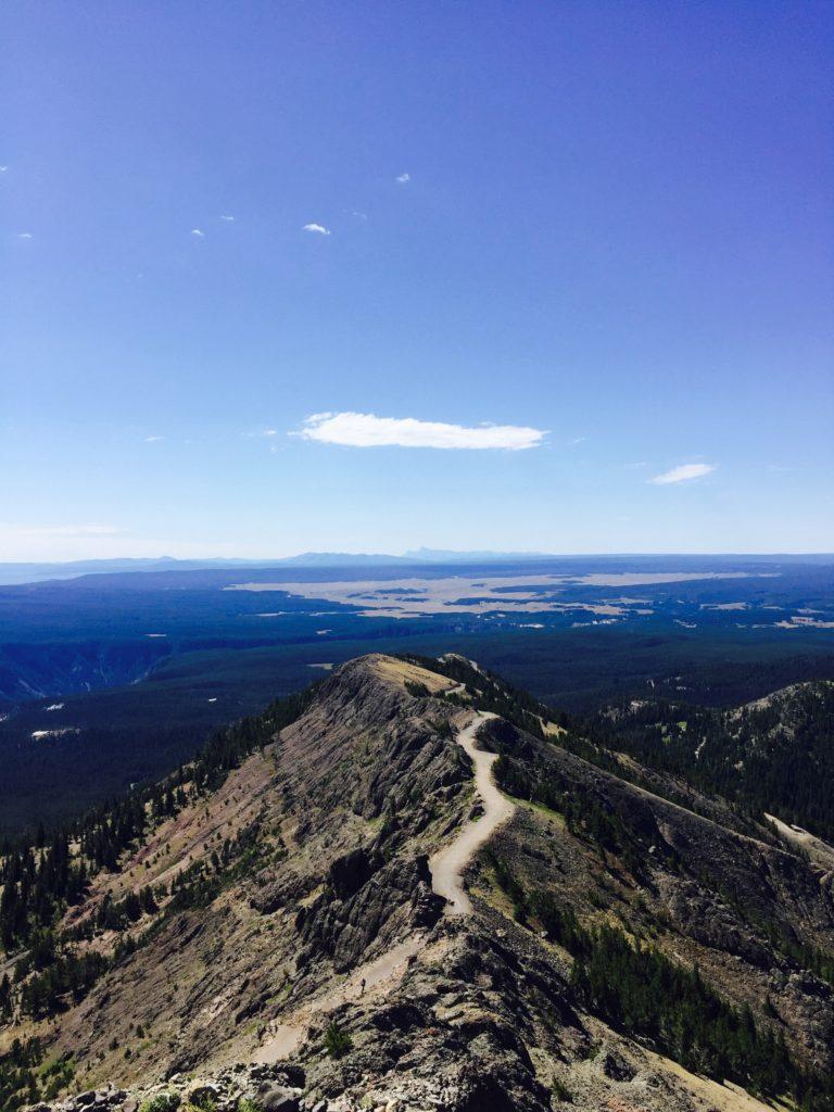 Mount Washburn in Yellowstone